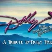 Dolly-Parton-Tribute-Act-Katie-Marie-and-band-300x169.jpg?132126171711366871